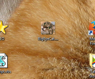 desktop_cat_icon