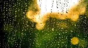 1. Bangla Poetry | Rain – বৃষ্টি