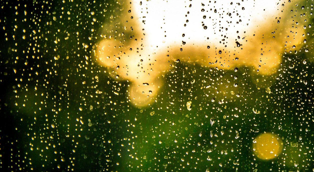 1 Bangla Poetry Rain বষট The Revisionist