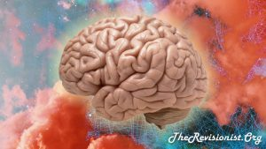 Plasticizing the Brain: Improving Cognition By BDNF Manipulation